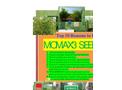 Top 10 reason to use MOMAX3 Moringa seed for oil seed plantation