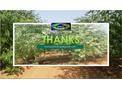 The Moringa Market Moves That could Shaped 2020: MOMAX3 Moringa Cultivar had an edge