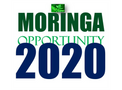 Why 2020 Holds Tremendous Promise for the Moringa Industry