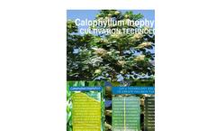 Calophyllum inophyllum  Cultivation Technology