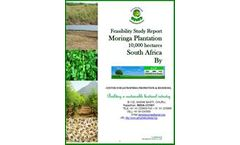 Biodiesel Project Feasibility Study Services
