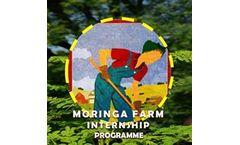 Moringa Farm Stay - Model 2021 - Moringa Farm Internship Programme