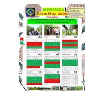 Moringa Farm Stay-1