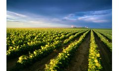 Technical Clay & Natural Solutions for agriculture industry