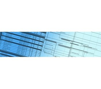 Program Management Services