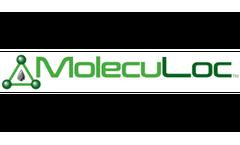 BioLoc - Sterilizing Solidifier (SS)