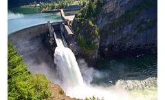 How Hydropower Facilities Deal with Fish Migration Impacts During Relicensing