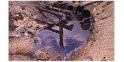 ClenzSoil Petroleum Remediation System