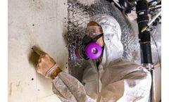 Mold Remediation Certification Training
