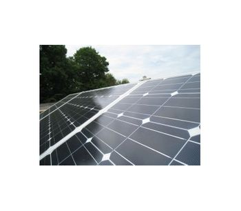 Angus - Melford Solar