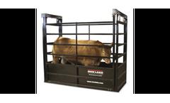 RoughDeck - Model SLV - Floor Livestock Scales