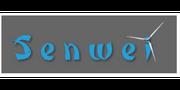Senwei Energy Technology Inc