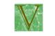 Vadose Environmental Consultants, Inc.