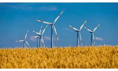 SDG&E Releases Sustainability Strategy to Advance Carbon Neutrality