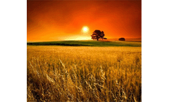 `How will Climate Change Affect Agriculture?