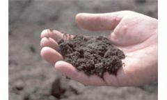 Absorbing organic pollutants in soils
