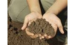 Past, present and future of soil sciences