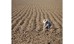 Long-term fertilizer experiment network in China: Crop yields and soil nutrient trends