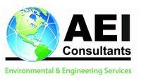 AEI Consultants (AEI)