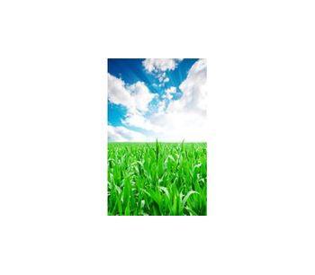 Fertilizers Service