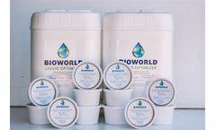 Proven Algae Control Services
