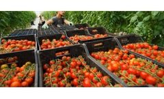 Pesticide and toxin screening for the food industry