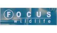 Focus Wildlife