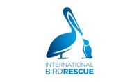 International Bird Rescue