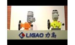 Ligao Dosing Pump Factory Vedio