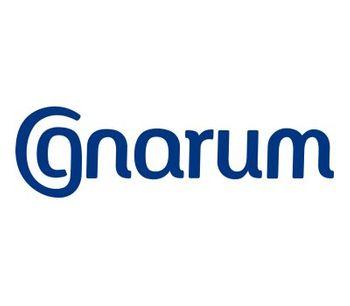 Gnarum Forecast - Energy Forecasting Software