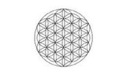 BioSphere - Biodegradable PET Fibers