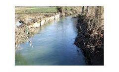 Riparian Vegetation Restoration And Environmental And Landscape Requalification