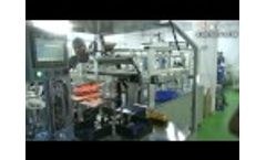 Sunny World automatic solar cell stringer machine made by Shenzhen xinhonghua solar energy co.,ltd Video