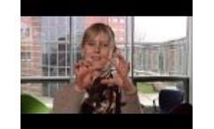 Cowi employee statements - Video