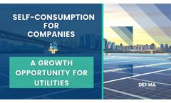 Self-Consumption for Companies: What is the role of the Utilities?