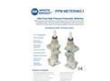 Model PPM100 - Pneumatic Metering Pumps- Brochure