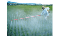 Type 2 diabetes may be linked to pesticide exposure