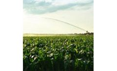 Invest in water for farming, or the world will go hungry