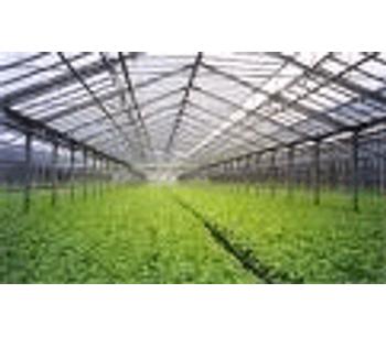 A new biopesticide for the organic food boom