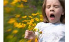 Road pollution blamed for higher allergy risk in children