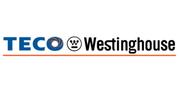 TECO-Westinghouse Motor Company