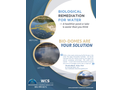 Submerged Bio-Reactors for Impaired Water Restoration Brochure