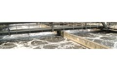 Safe and biodegradable specialty cleaning chemicals for sludge/wastewater treatment