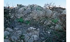 Government bill regulating contaminated soils in Catalonia