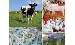 MICROBE-LIFT® - Direct Fed Microbials Solutions