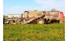 Pik Rite - Model 240 - Tomato Harvester