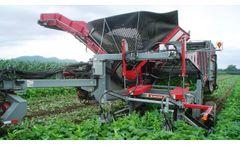 Pik Rite - Model 3100 - Cucumber Harvester