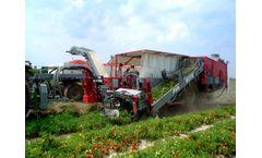 Pik Rite - Model 190 - Tomato Harvester