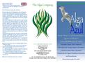 Alga Azul Leaflet