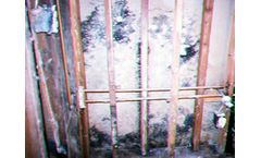 Mold Sampling Services